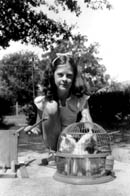 Marilu as a child, with bird cage full of kittens.  Click on image to enlarge.
